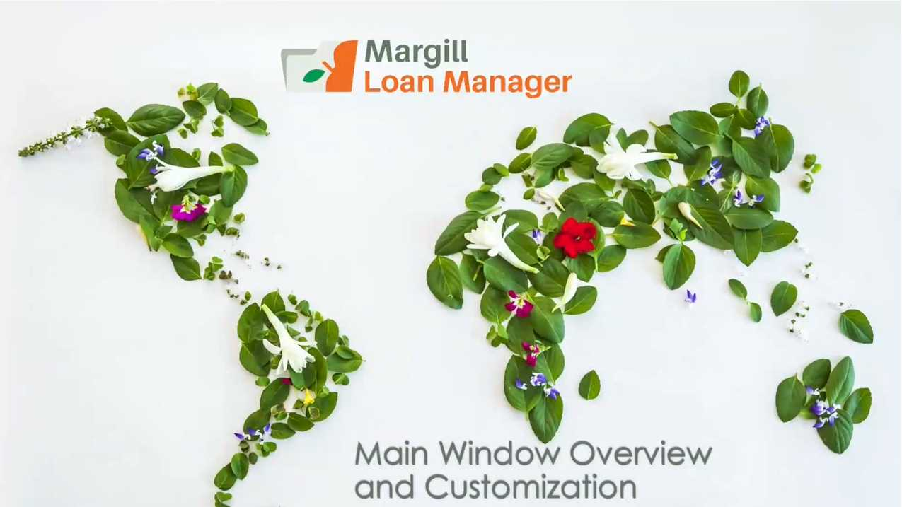 Main Window Overview and Customization